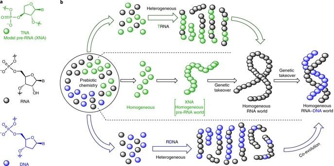 molecule tna