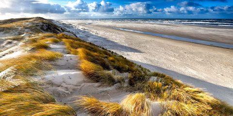 chaque sable plage son unique