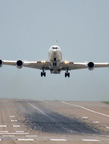 avion mercury collision oiseau