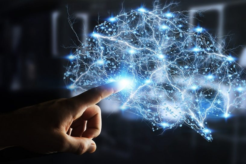stabilite cerveau