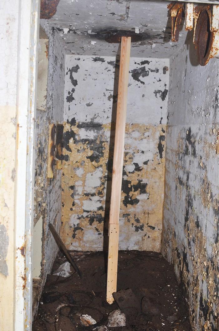 masse-fourmis-bunker