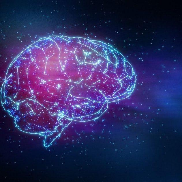 carte cerveau amputation