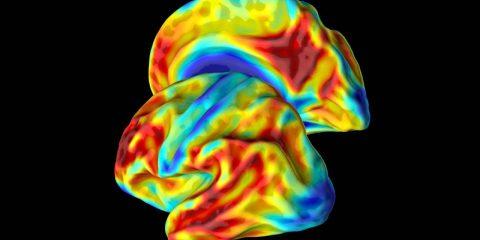 femme colombienne mutation genetique aide alzheimer