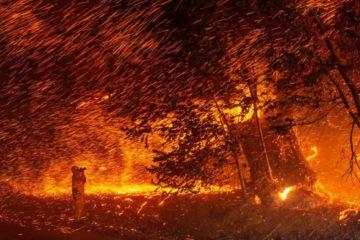 incendie feu pyrocene