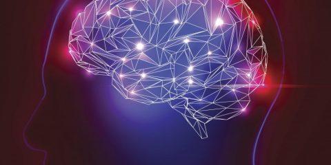 pensees cerveau