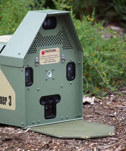 pistolet gel detection laser tue chats sauvages australie