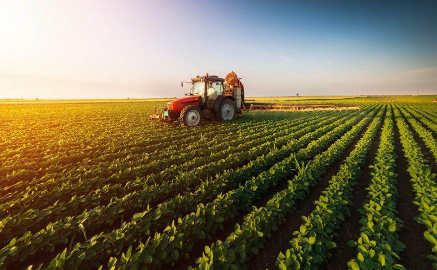 agriculture innovation scientifique technologique