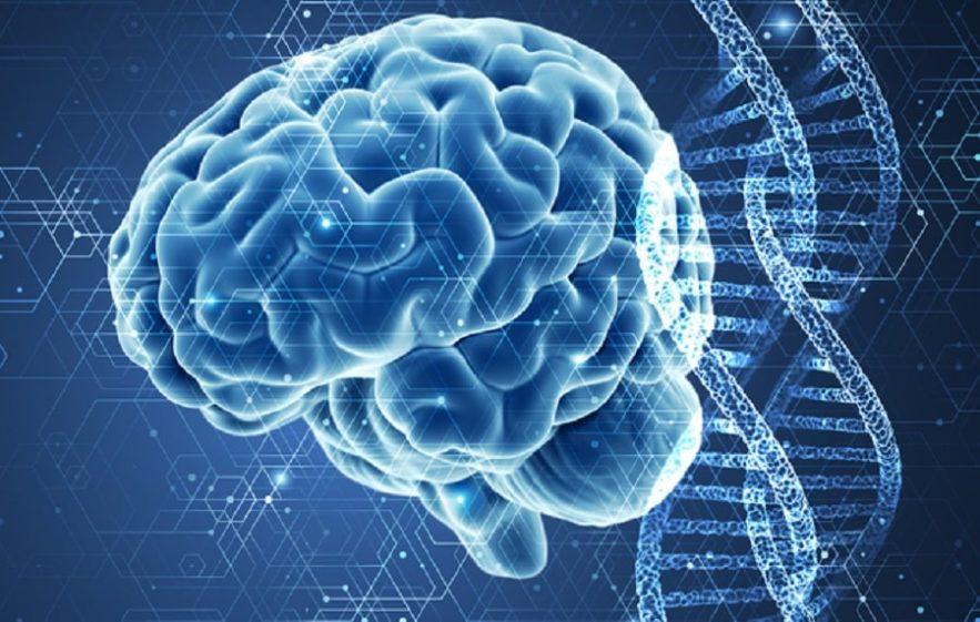 alzheimer mutation