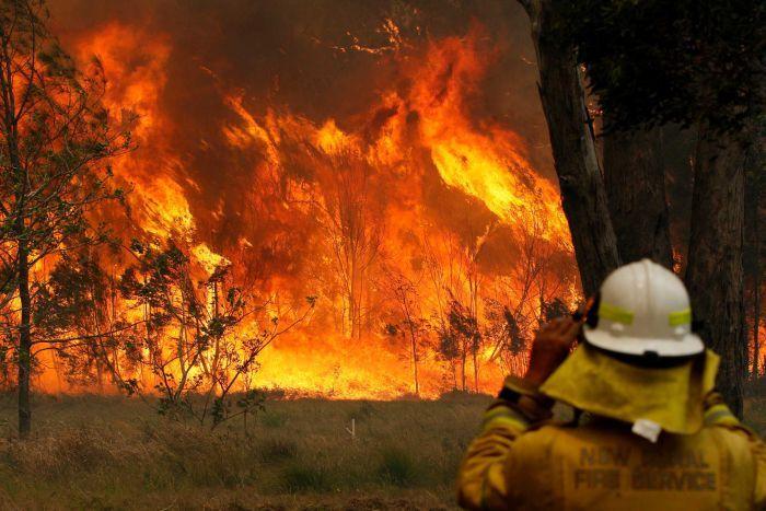 feu incendie pollution australie sydney danger air toxique