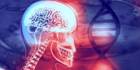 genes troubles psychiatriques