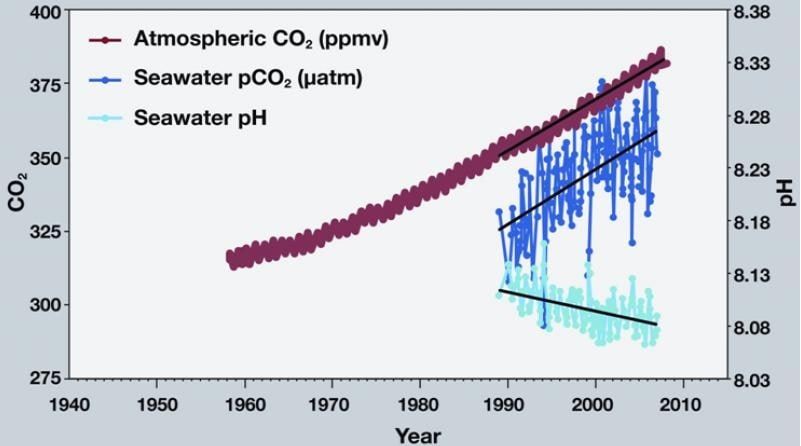 graphe acidification