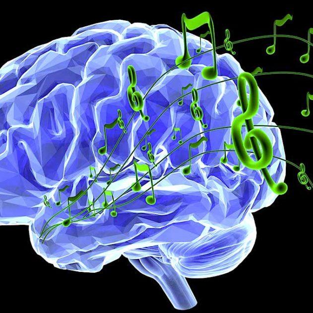 jouer batterie changements cerveau plasticite