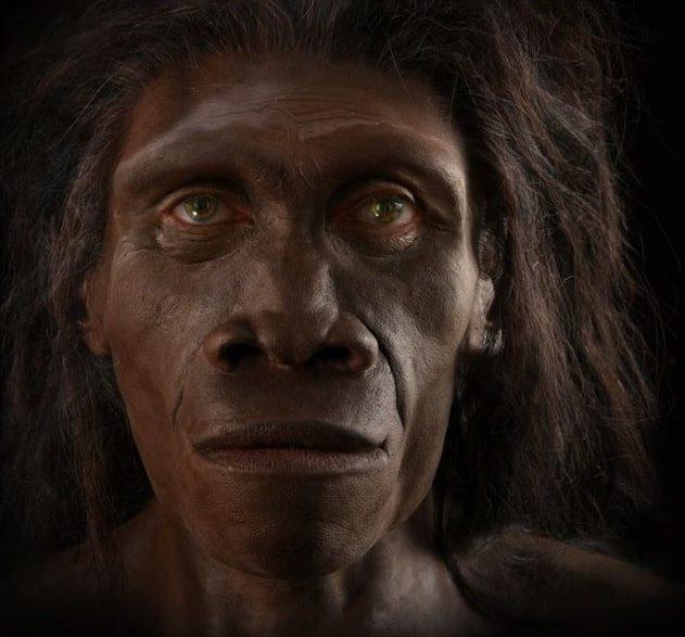 mort homo erectus