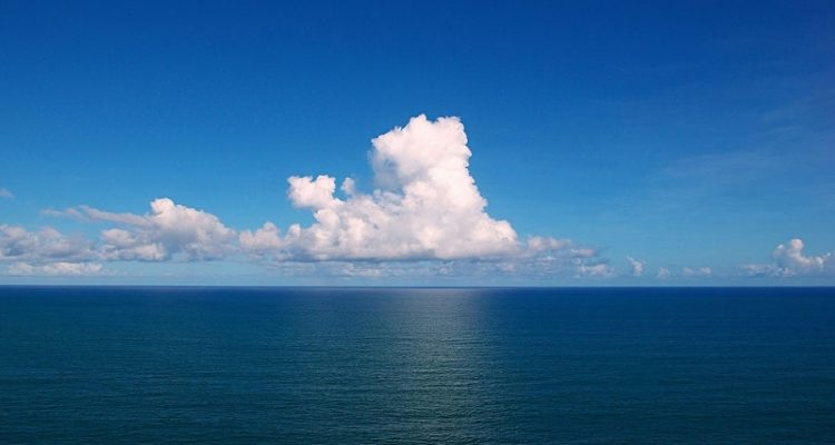 oceans zones mortes