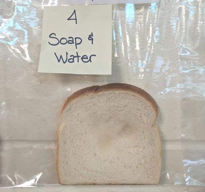 pain moisissure bacteries saletes main laver savon desinfectant