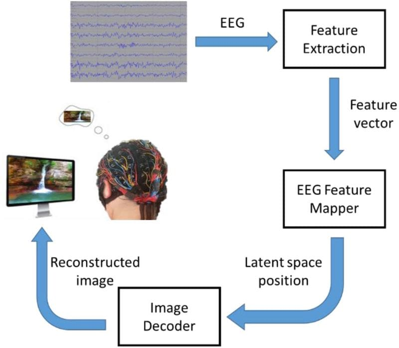 schema general simplifie systeme lecture eeg reconstruction image