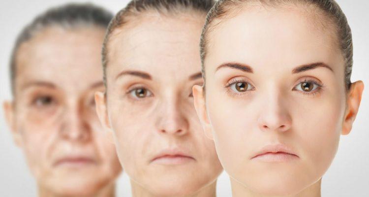 vieillissement etapes