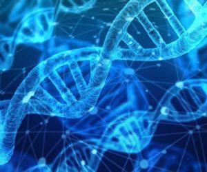adn dna donnees genetiques genes