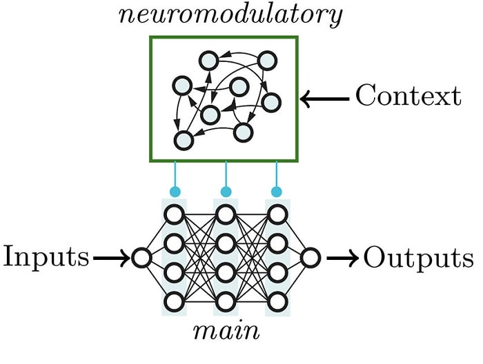algo neuromodulation
