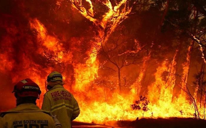 australie feu brousse