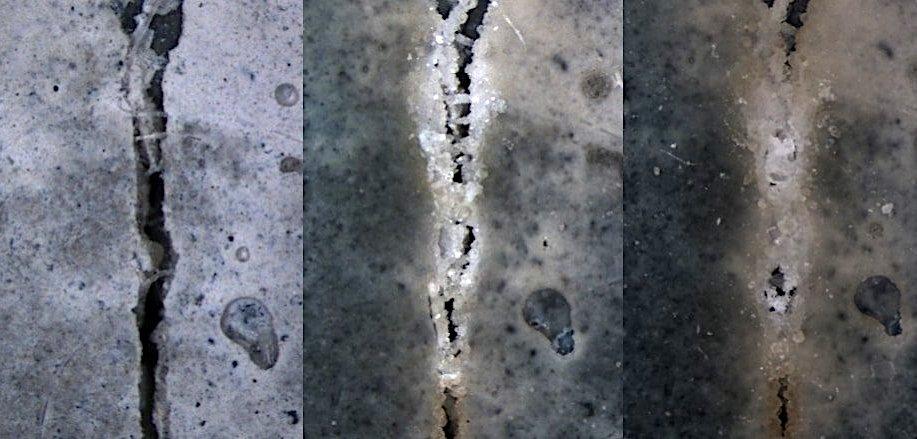 beton auto regenerant developpe