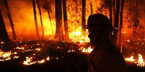 australie feu incendie