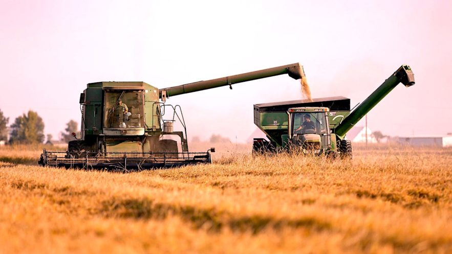 systeme alimentaire mondial insuffisant non durable
