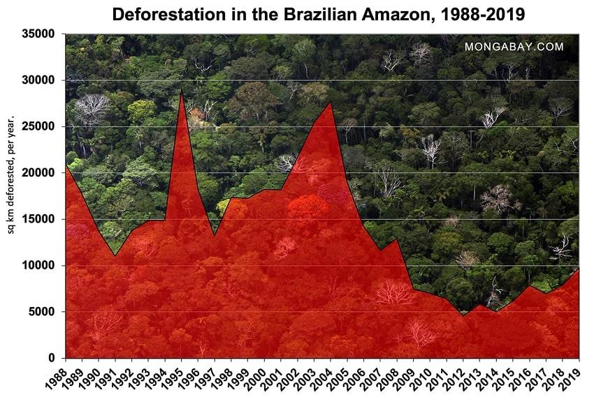deforestation graphique