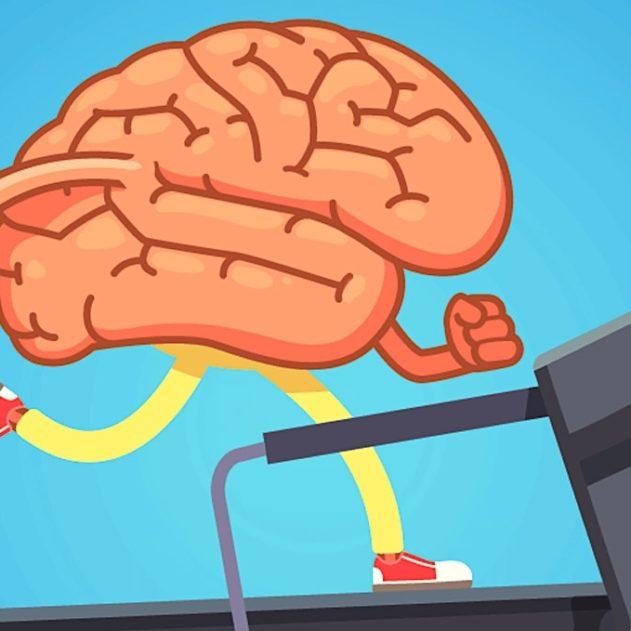 exercice aerobie ameliore fonctions cerebrales