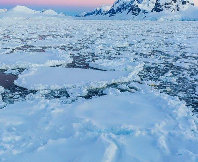 fonte antarctique