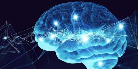 neurones bio artificiels