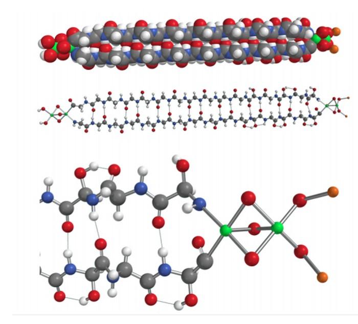 molecule proteine extraterrestre