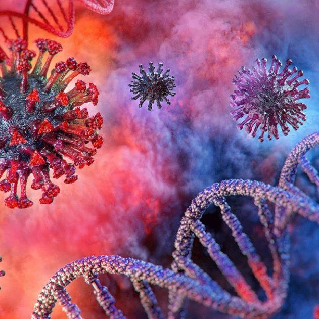 coronavirus adn