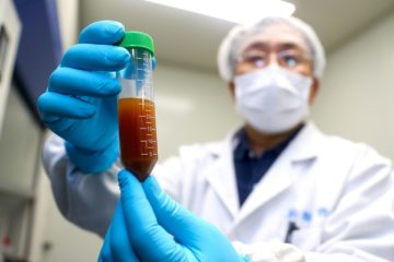 coronavirus virus covid-19 course vaccins
