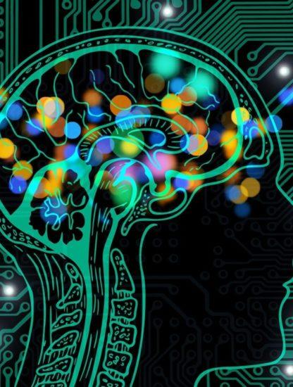 IA décodage activité cérébrale texte