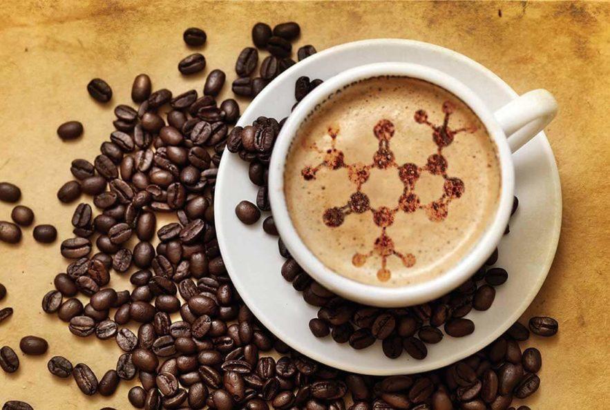 cafe genetique epigenetique changement sante amelioration