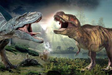 dinosaures kemkem
