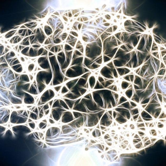 défaillance microglie cerveau homme autisme