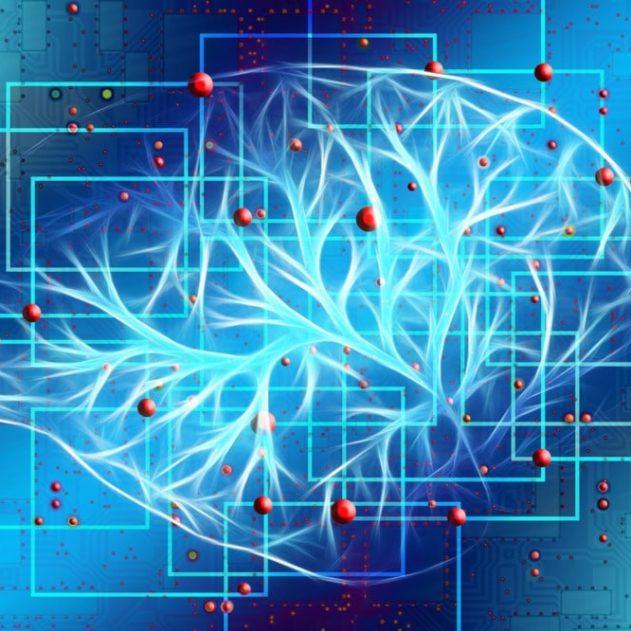 communication neurones artificiels biologiques optogénétique