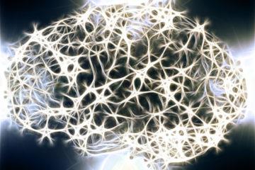 contrôle conscience cerveau claustrum