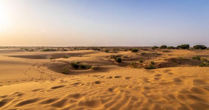 réchauffement climatique changement climat temperature extreme