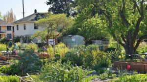 espaces verts urbains biodiversité