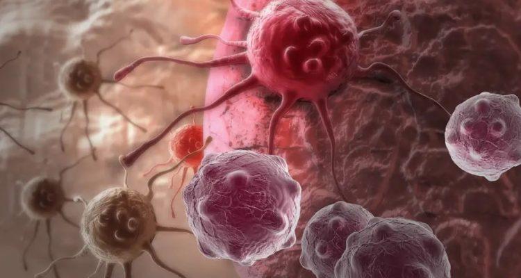tumeurs bacteries