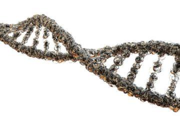 vaccin covid-19 génome virus
