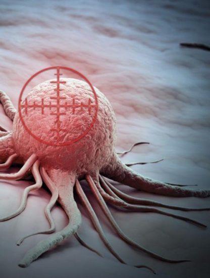 cellule cancereuse cancer immunitaire système