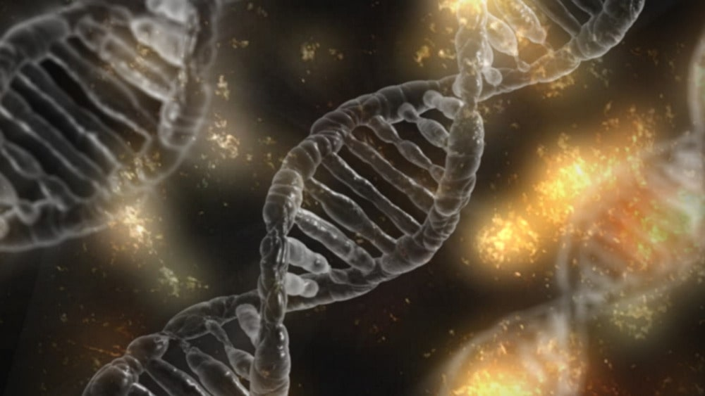 embryons modifiés CRISPR anomalies imprévues