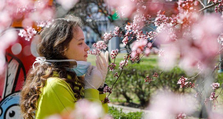 Le symptôme de la perte de l'odorat enfin expliqué