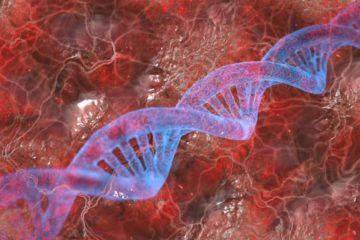 thérapie antigénique maladies auto-immunes