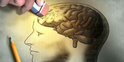 alzheimer maladie gene