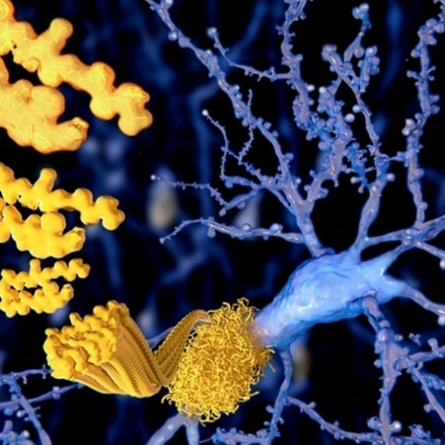 beta amyloide alzheimer maladie